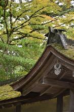 平成最後の夏休み 「紀伊半島ぐるり旅 Day1」