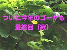 ▼【動画】最終回
