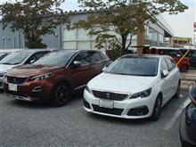クープフランシュ3連発!明日からいよいよ関東でプジョー新型508公開!価格は600万!?