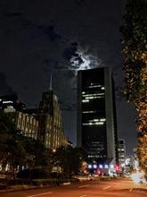 朧月夜「月が綺麗ですね」