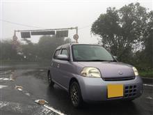 (o^^o) 雨の日曜日…