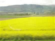 スイス鉄道の旅 / Switzerland