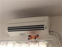 エアコン修理🌀