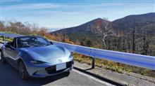 紅葉を見ながらのドライブを楽しみました。