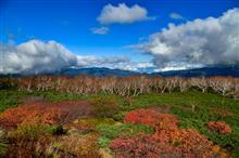 紅葉シーズンの始まり、乗鞍高原へ。