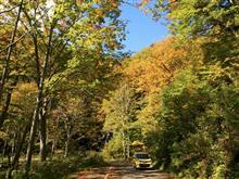林道秋山線を行く