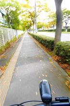 秋の仙台を駆け抜けてみた。(^。^)
