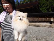 まるちゃん、熊野本宮大社へ行く。