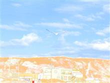 🎣 釣りVARI日記 No.6 🎣『三浦半島 城ヶ島編』