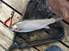雨が上がった後の釣り