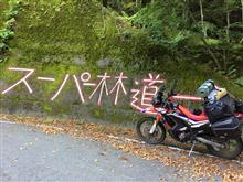 有給使って四国 剣山スーパー林道に。