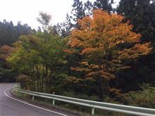 茶臼山へ行ってきました。