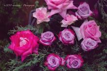 Arrangement of the Rose