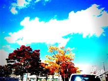 秋晴れWednesday、