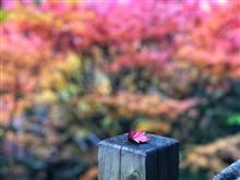 174kmの国道沿いで見た初秋の風景