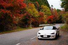 写活の後は奥三河で紅葉ドライブ