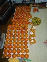 柿を買いに岐阜へ。