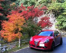 今日は久しぶりのGIULIETTAで紅葉と温泉に!