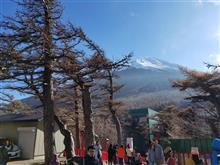 富士山と吉田うどん