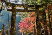 西渓公園の紅葉。
