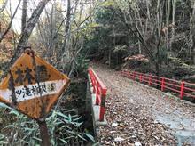20181115七ツ滝柳沢林道