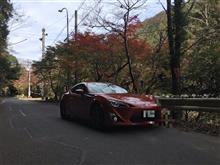 秋を求めて (^^)