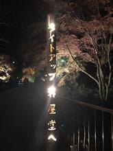 岩屋堂ライトアップ