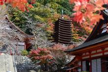 京都・奈良紅葉紀行 2018-1 談山神社・室生寺