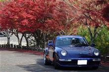 紅葉シーズンの京都🍁