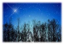 しし座流星群。・:+°☆