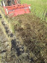 田んぼを耕したり色々していました