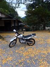 明神峡(静岡県春野)