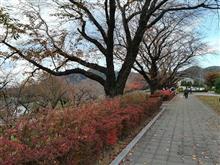 晩秋の城山湖・津久井湖…