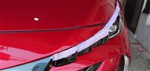 紅葉を見に行った / デイライト&流れるウインカー回生編