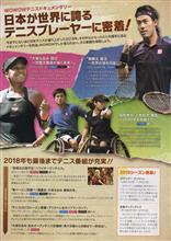 テニステレビ観戦