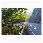 志駒渓谷の紅葉を見ながら