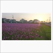 夕陽な風景・・・(^^♪