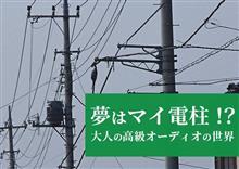 """「""""マイ柱""""電源」VS「燃料電池」"""