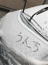 新潟市内は初雪に((;゚;Д;゚;))カタカタカタカタ