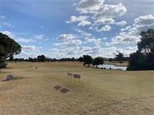 「エージシュート」と今日のゴルフ