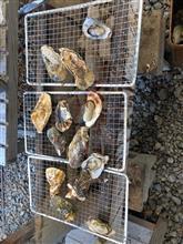 牡蠣のバーベキュー。