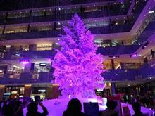 KITTEのクリスマスツリー