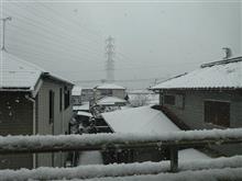 名古屋初雪