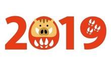 2019年猪突猛進♥️