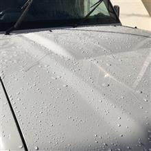 新年早々の洗車