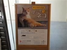ネコ合さんの写真展(^o^)