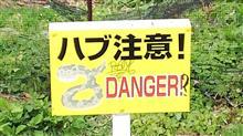 沖縄を満喫して帰ります🎶🚗💨🎶