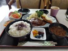 豊田レトロ食堂&レトロ喫茶店探訪 後編 水槽いっぱいの喫茶店編