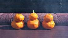 ★関東は大雪?(爆)ミカン&野菜&お菓子!早起きして奥多摩湖朝一だよ!全員集合!(笑)2月のFC-WORKS奥多摩湖オフ開催です♪