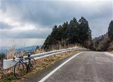 今日のサイクリング --- 梅、はじまりました。